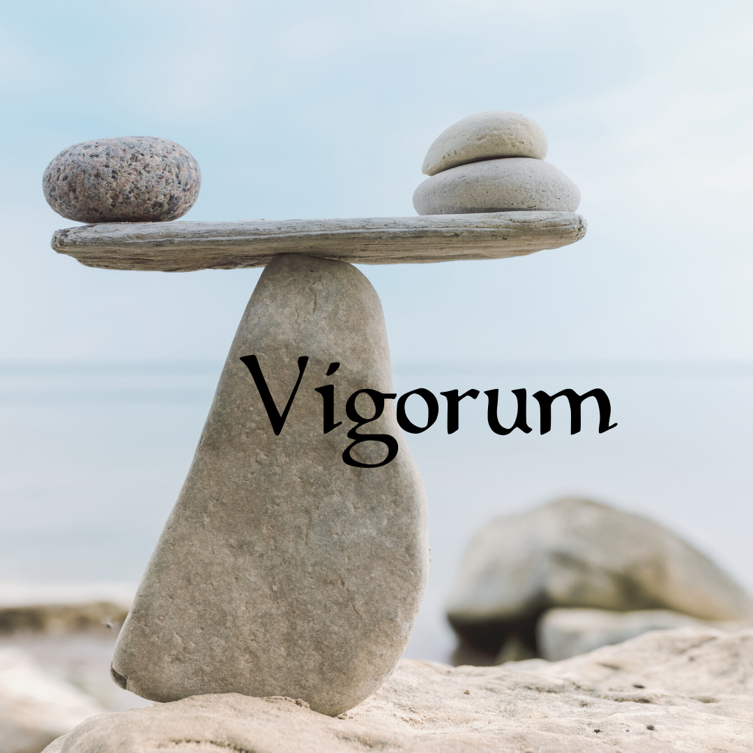 vigorum-3